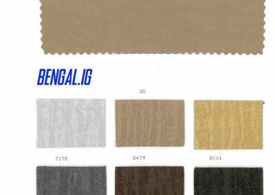 Bengal ig